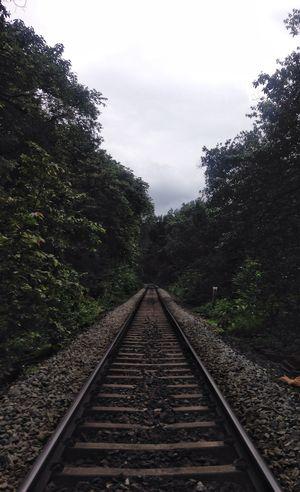 A trip to Dudhsagar falls