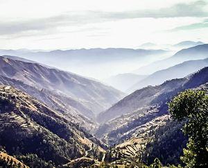 Chail, Himachal Pradesh #BestTravelPictures