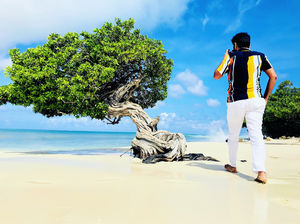 Aruba : Caribbean Island, more than beaches !