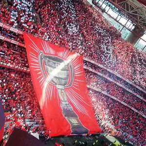 Benfica 1/undefined by Tripoto