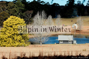 Why you must visit Bilpin in winter?