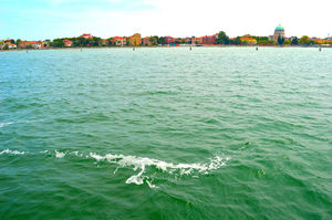 Venice: The Bride Of The Sea