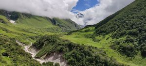 The Trek to the Valley of Flowers and Hemkund Sahib