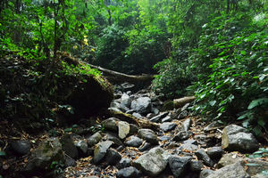Hill Stations in North East India