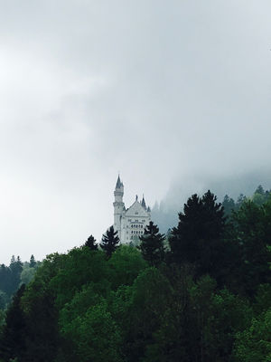 Munich & Neuschwanstein Castle  In 3 Days