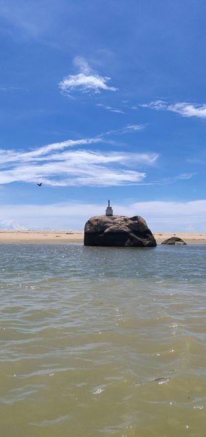 Rock-ing elephant on the sea shore.