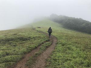 #BestOfTravel - My experience of Western Ghat through Kudremukh trek