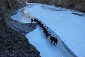 Frozen river trek- Chadar
