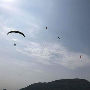Got love for adventure, then try solo paragliding