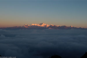 A trip to Forest and Mountain: Buxa-Jaldapara-Darjeeling