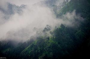 #Kausani, Uttarakhand ( Ranikhet/Nainital)- Paradise of Nature Lovers#TripotoTakeMeToHimalayas