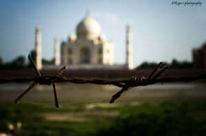 THE TAJ-- White Goddess, A Poetry! #TAJMAHAL
