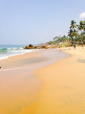 Trivandrum, for the love of beaches and backwaters