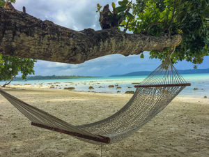 Things to do in Havelock - A Dream Tropical Paradise