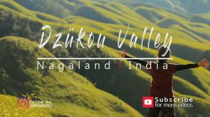 Bike trip to Dzukou Valley Nagaland aka Scotland of India
