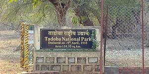 Jewel of Vidarbha - Tadoba - 3 days itinerary from Mumbai