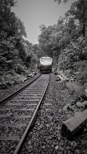 Trek to Dudhsagar Waterfalls On Rail Tracks #trainjourney