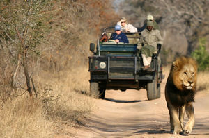 Kruger National Park 1/undefined by Tripoto