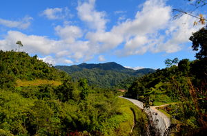 Visit to Cameron Highlands, Malaysia's most extensive Hillstation