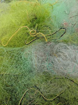 Kochi-Muziris Biennale - A Must Do for the Art Lover in You
