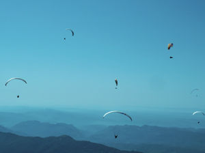 Backpacking to the paragliding paradise of India!