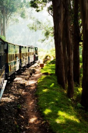 Weekend Trip to Ooty, Coonoor and Surrounds.