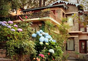 Nathukhan: Nainital's Secret Weekend Getaway