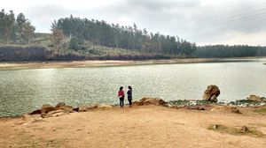 Pine Forest Shooting Spot 1/undefined by Tripoto
