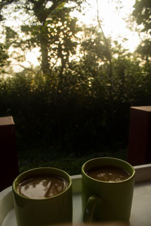 Courting the Coffee Trails of Coorg