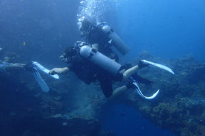 Life Below the Waters : Diving The Liberty Ship Wreck in Bali