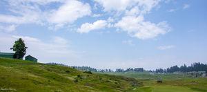 Meadows village, Gulmarg, Kashmir