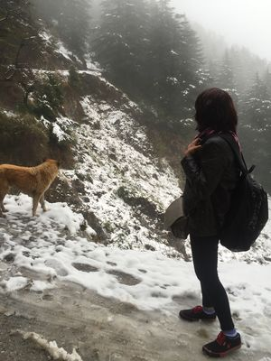 Dharamshala-Mcleodganj , a backpacker's paradise