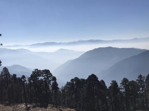 Shoja: An Undiscovered Jewel in Tirthan Valley