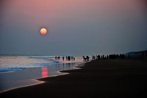 Chandrabhaga Beach 1/6 by Tripoto