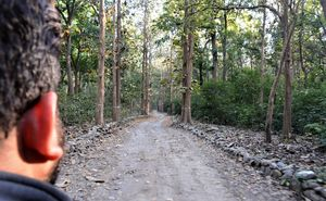 Have you been to this Ancient temple inside the mighty Jim corbett!