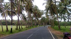 Solo Ride To Goan Gateway- Majorda