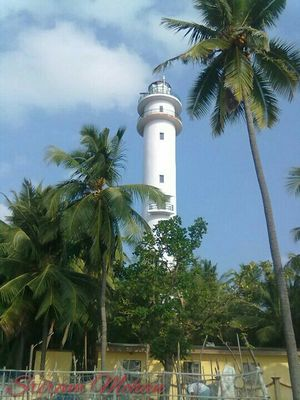 Lakshadweep – Land of Corals