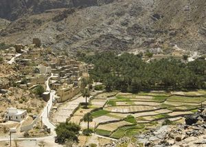 Jebel Akhdar 1/undefined by Tripoto