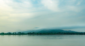 The heaven of Bihar II Valmiki Nagar tiger reserve #colourgreen