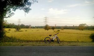 When I cycled 443 Kms back home from college for vacations   A Travelogue