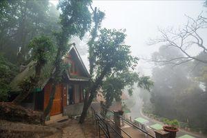 Mystic Darjeeling
