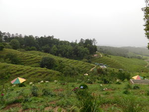 Ranikhet: The Perfect Retreat....just not in Summers!