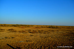 Rann Utsav – It's vast and infinite!