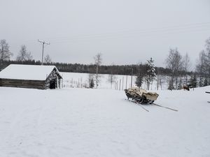 Glimpses of Arctic life as tourist in Rovaniemi,Lapland part of Finland