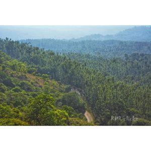 Chikmagalur - Mullayanagiri Trek