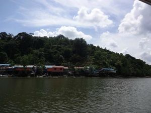 Kuching Wetlands National Park Kuching Sarawak Malaysia 1/1 by Tripoto