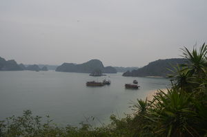 Trek to Monkey Island