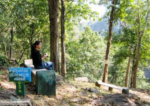 Great Tips for Women Traveling Solo in India