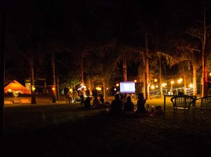 Camping & Bonfire In The Woods: The Perfect Secret Getaway For Your Hippie Group Near Delhi