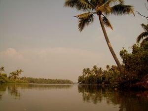 Ashtamudi Lake 1/undefined by Tripoto